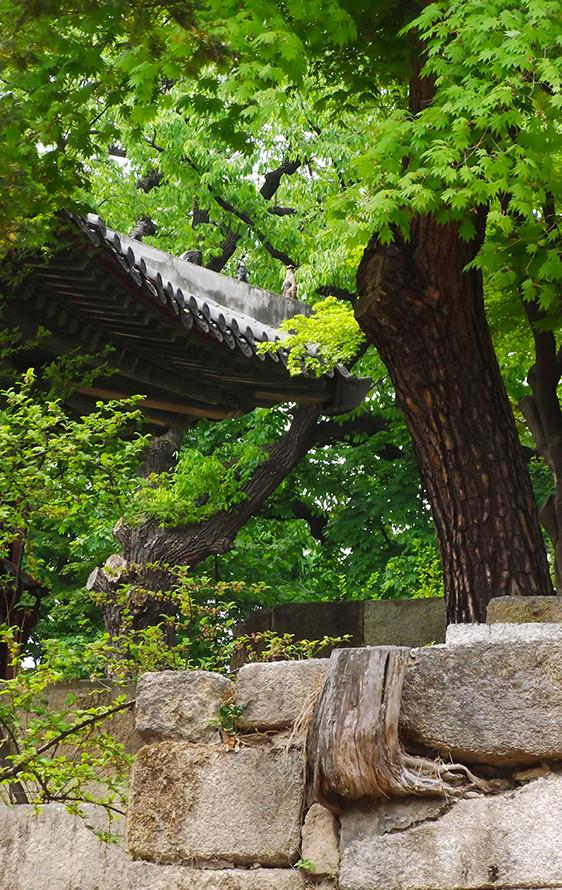 Secret-Garden-2-e1401798705760.jpg