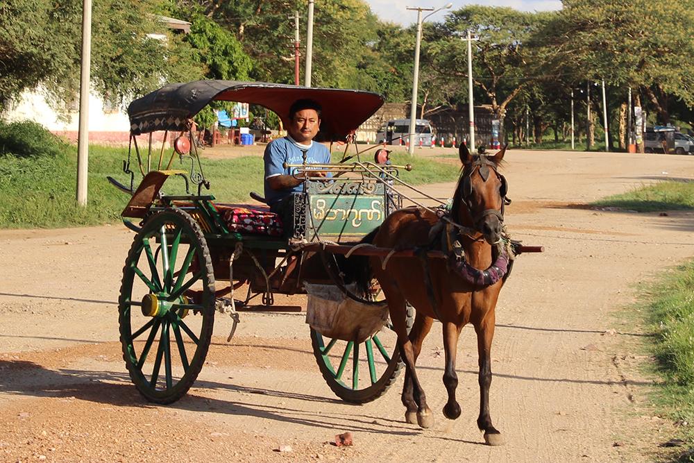 Horse-Cart1.jpg