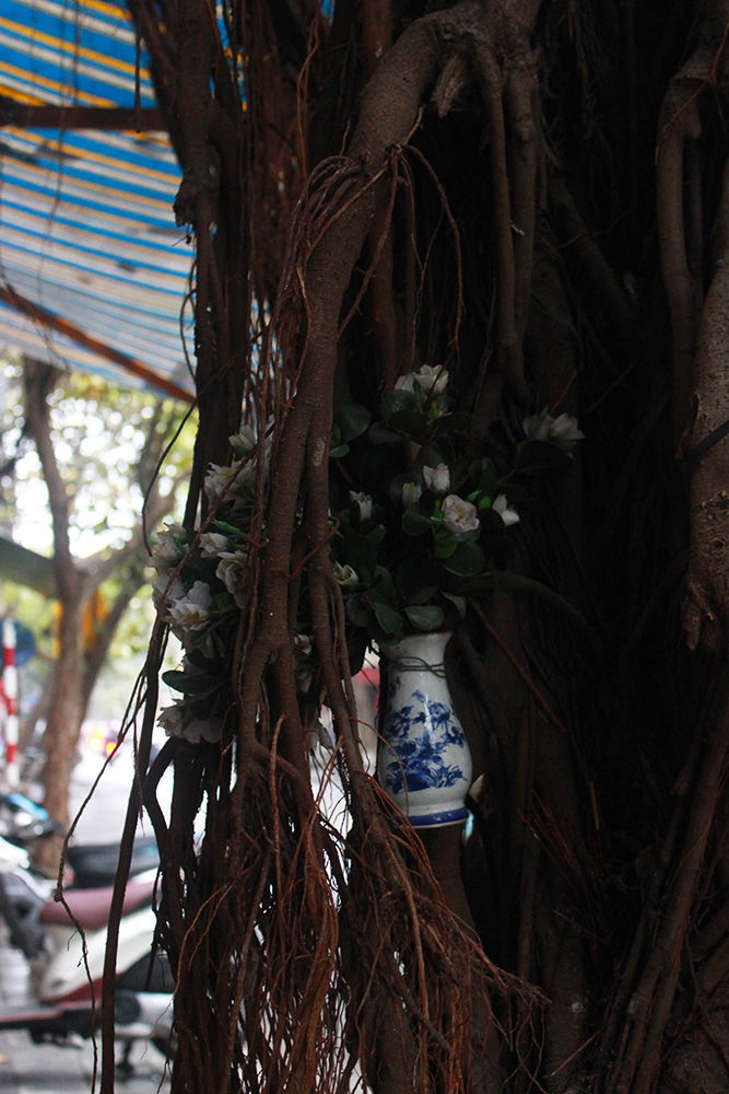 Hanoi-tree-shrine.jpg