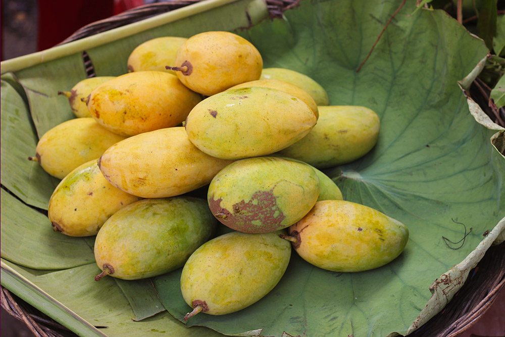 Like delicious mangoes.