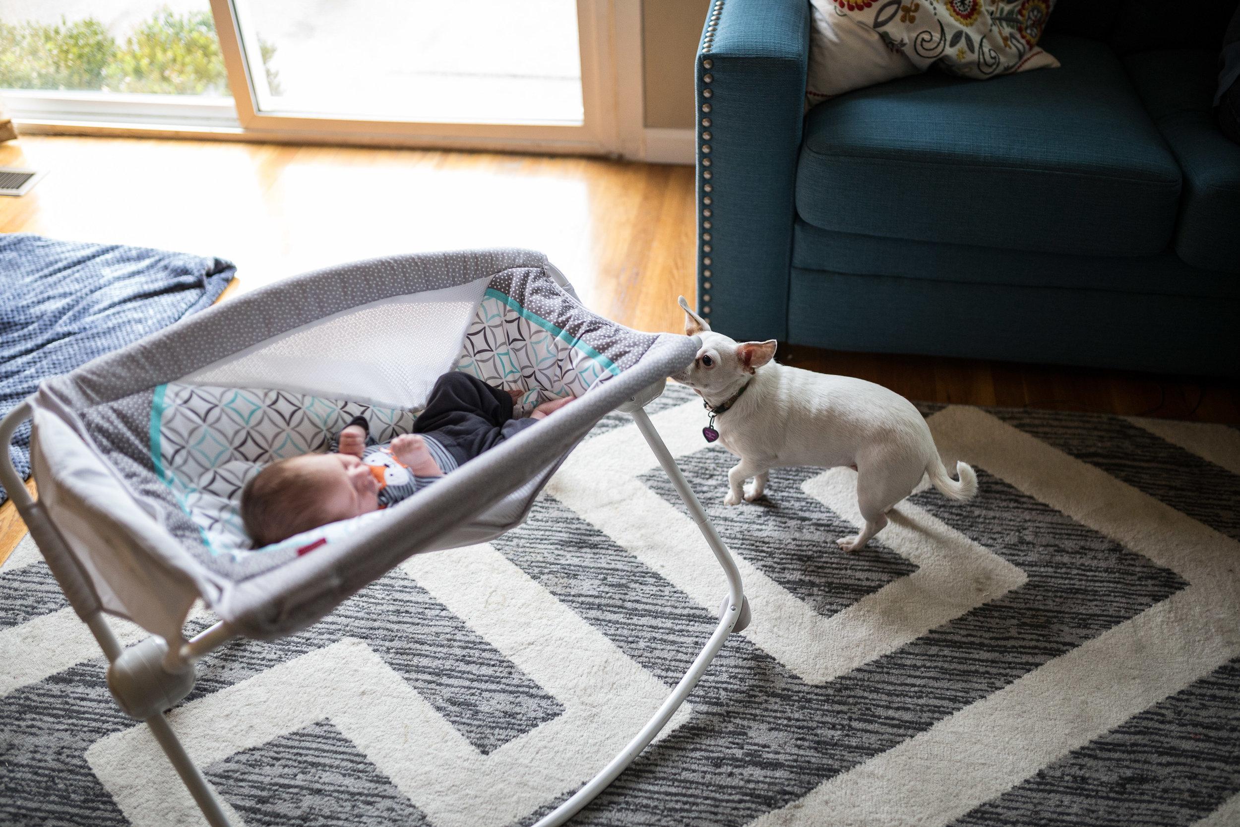 kristenmurakoshi-family-newborn-21.jpg