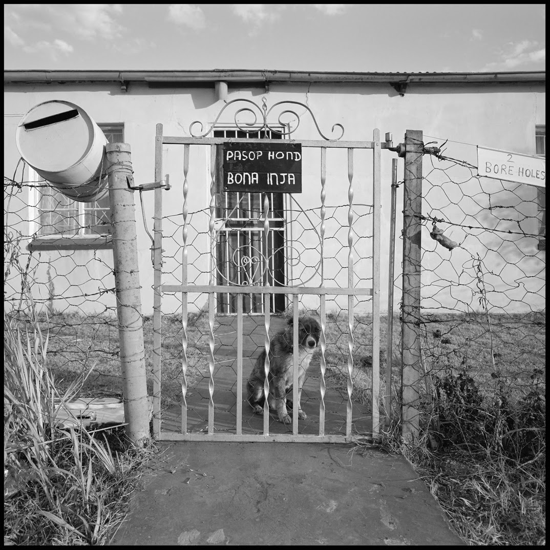Beware of dog and two boreholes.jpg
