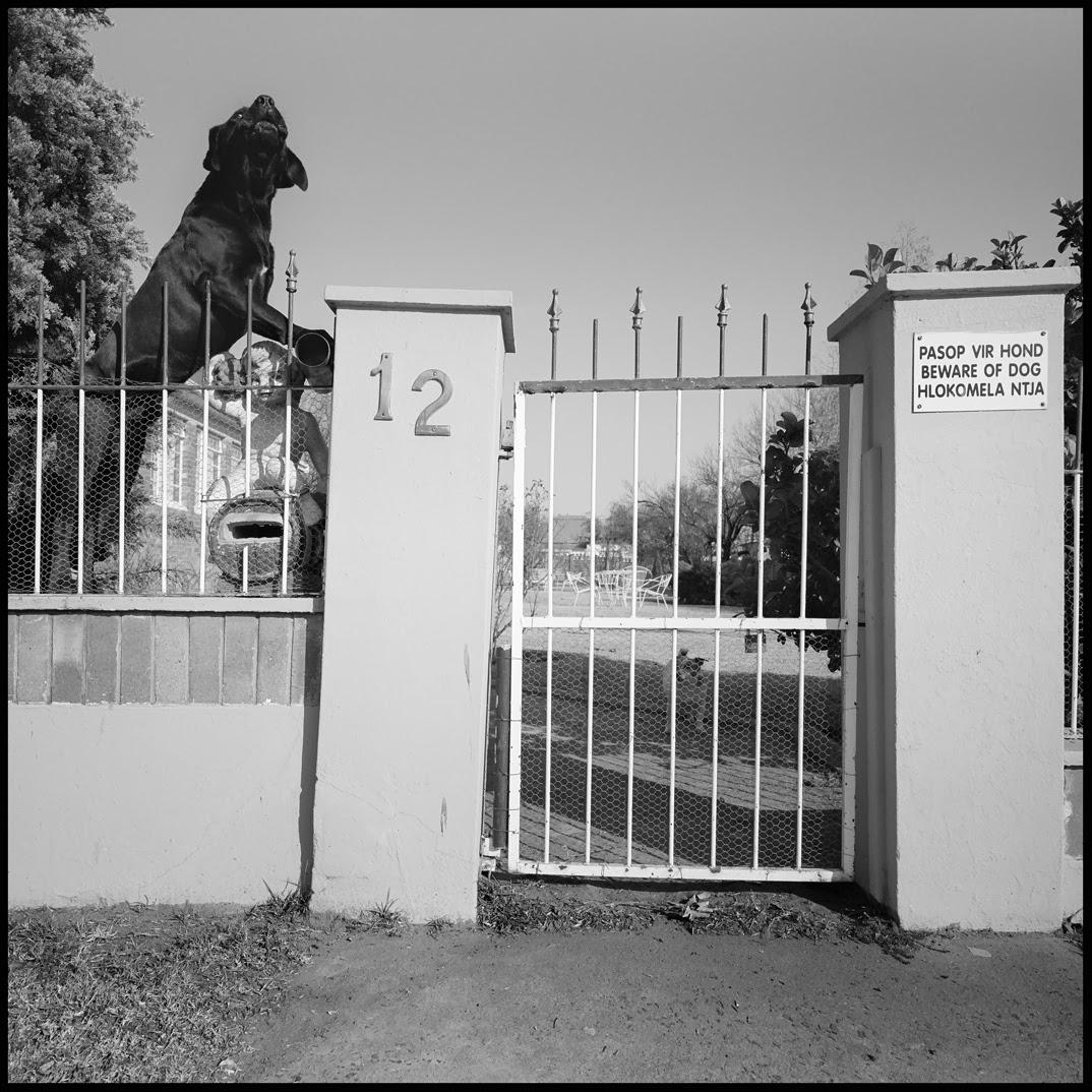 Beware of big barking black dog.jpg
