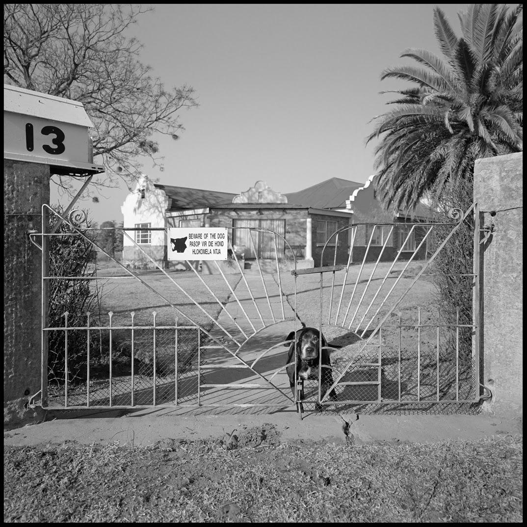 Beware of old dog at no 13.jpg