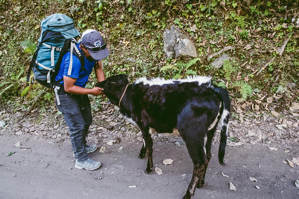 nepal sarah schu tours-65.jpg