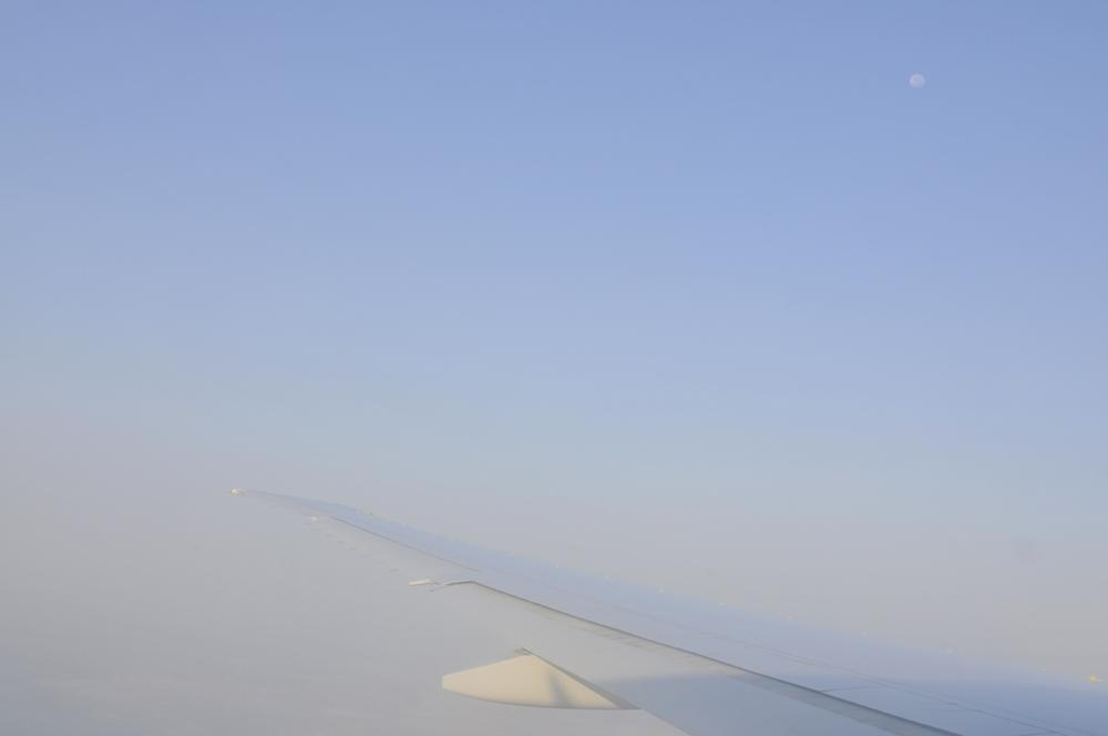 live-seasoned-fall15-international-flight3.jpg
