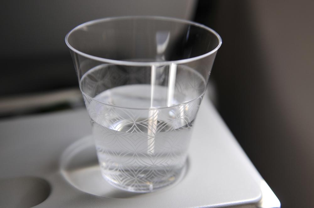 liveseasoned-fall15-international-flight.jpg