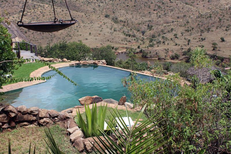 Pool with eles in dam behind.jpg