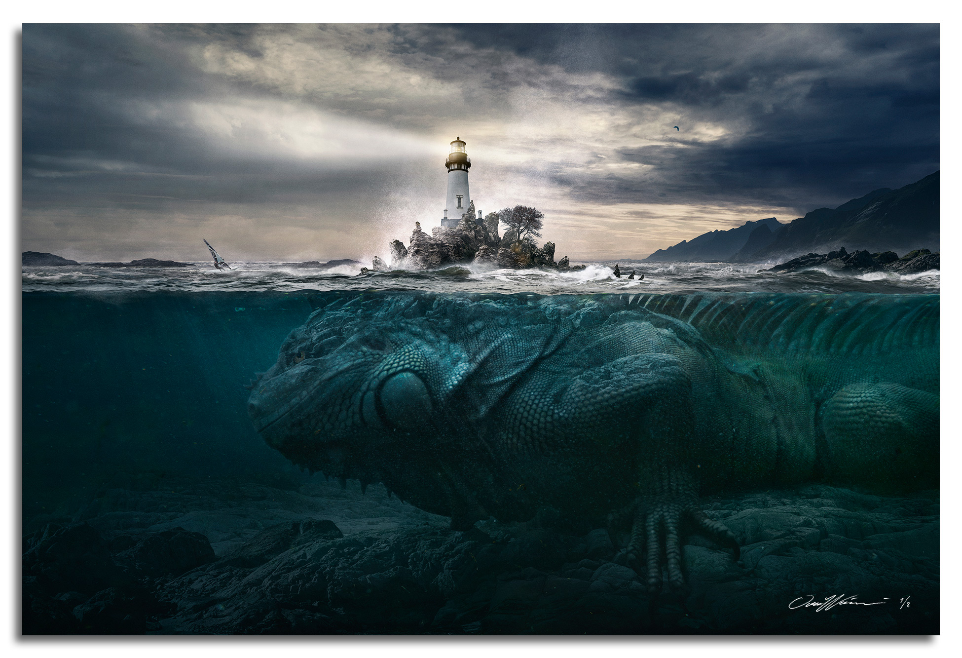 Lizard Rocks , 2017  Limited Edition prints available sizes: Large 150 x 100 cm - Edition of 3 Medium 90 x 60 cm - Edition of 8