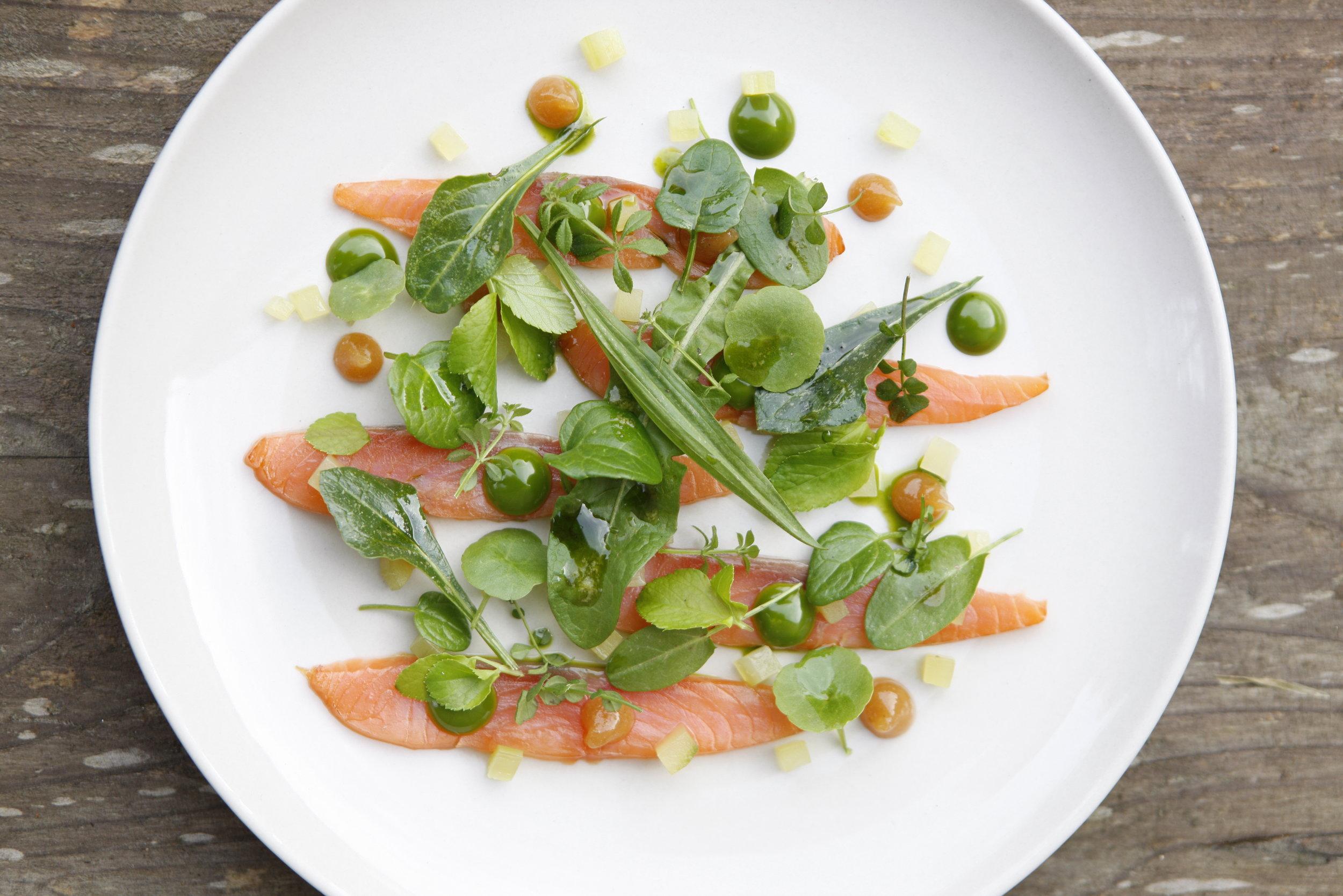 Smoked salmon & green salad