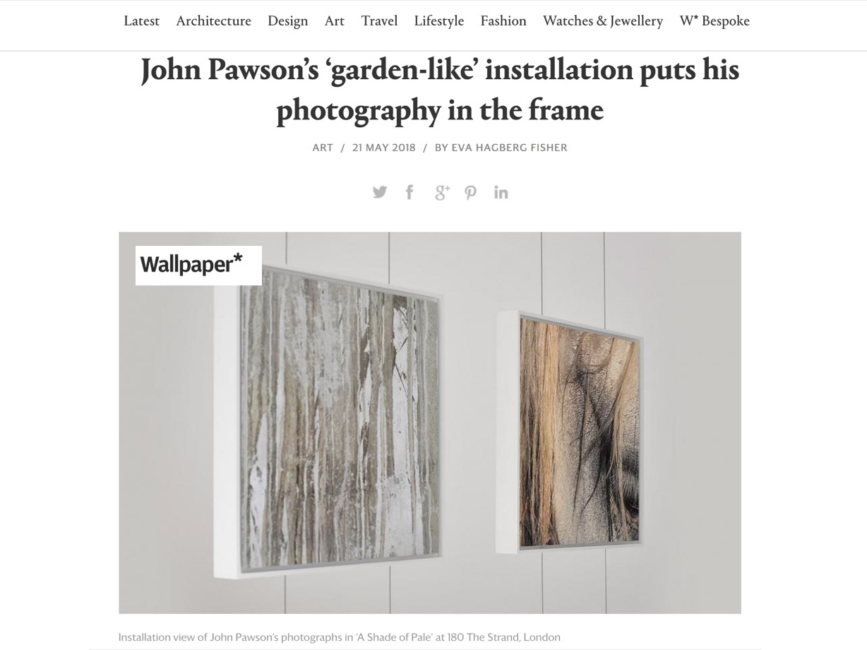 Wallpaper: John Pawson's 'garden-like' installation puts his photography in the frame