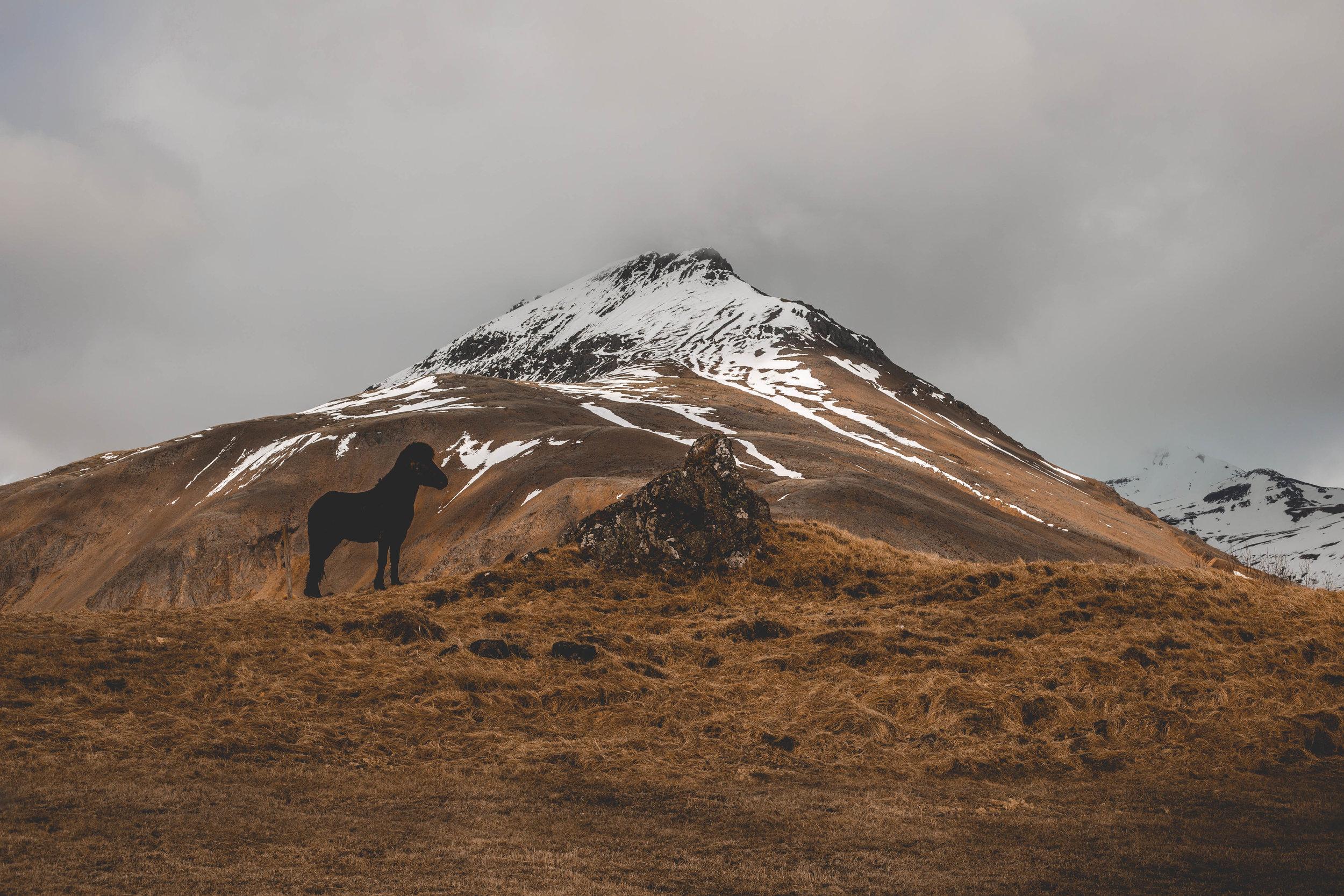 Iceland pics (3 of 53).jpg