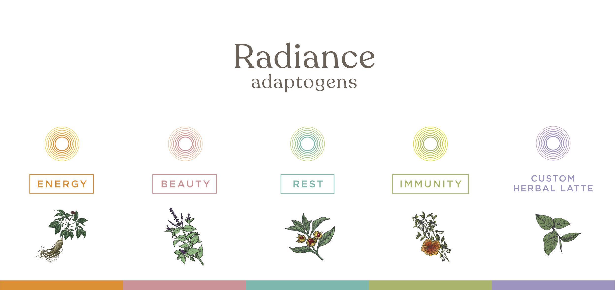 Radiance web-01.jpg