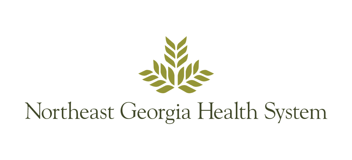North Georgia Health Systems