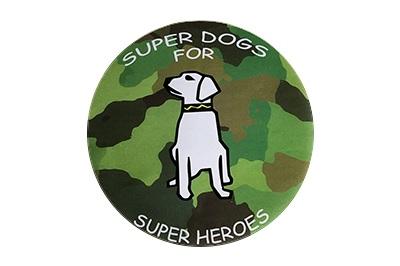 SDFSH-logo.jpg