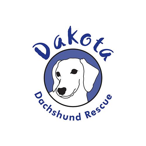 DDR-logo.png