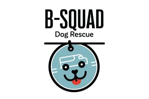 BSDR-logo.jpg