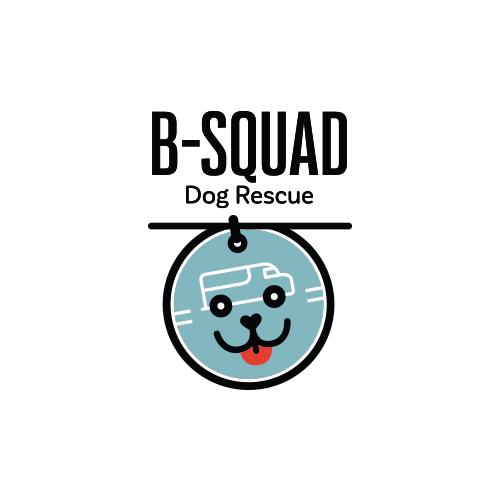 BSDR-logo.png