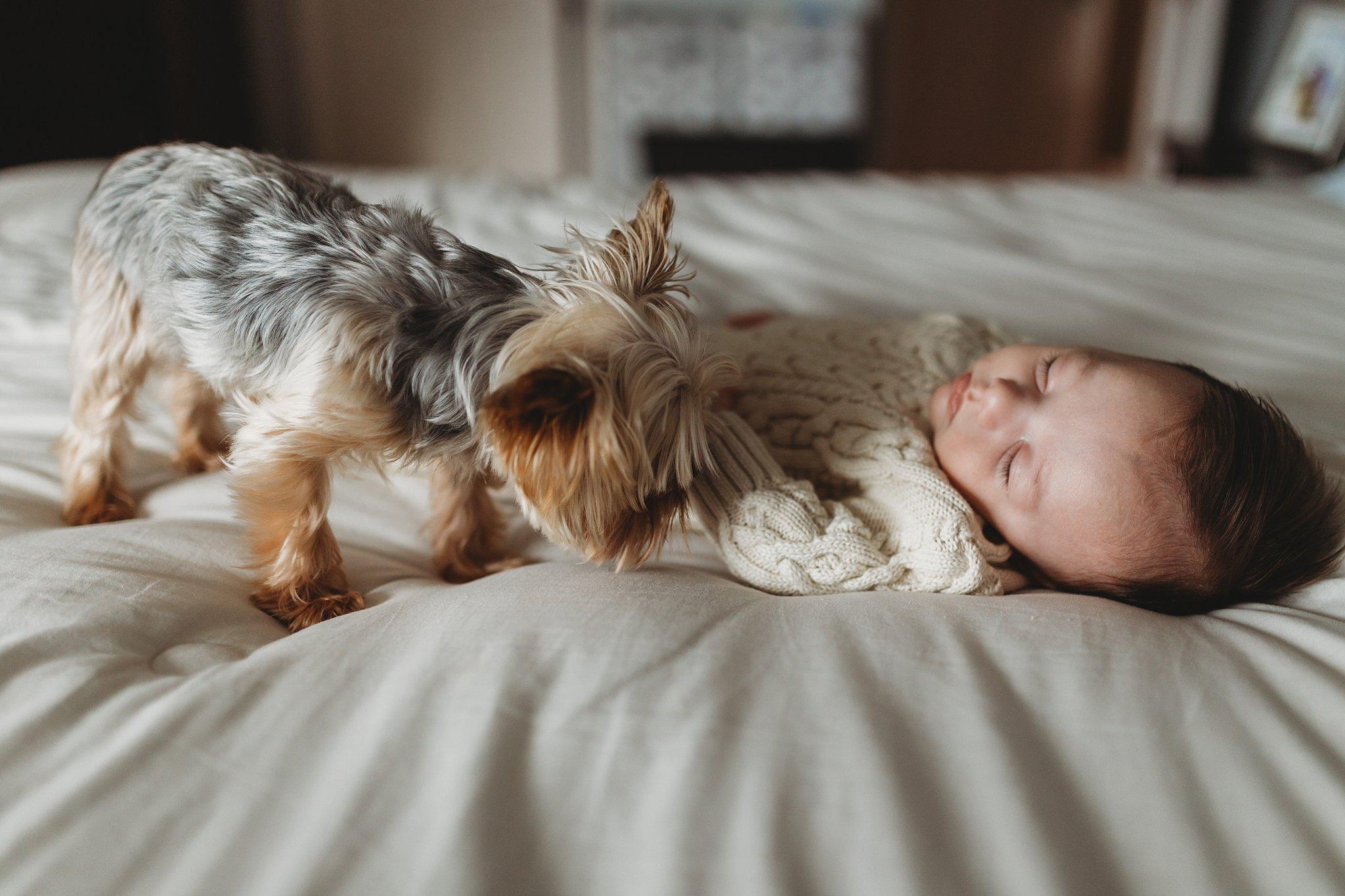 Frenic Lifestyle Newborn_0015