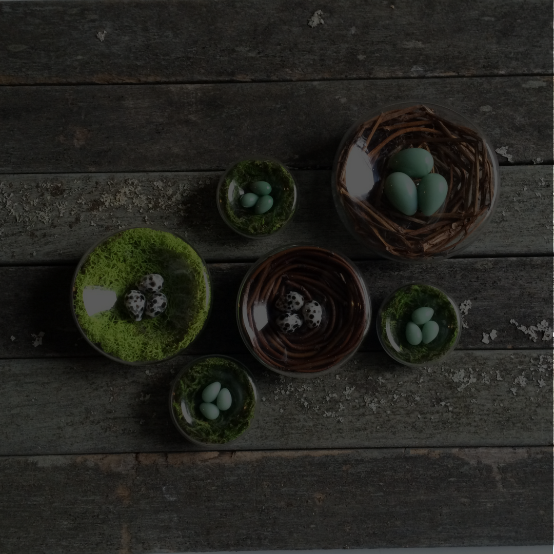 Nature Inspired Glass Nests and Eggs - Brook Drabot Glass
