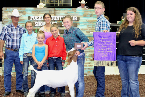 Grand Champion Market Goat  Buyer: Arc Valley Construction, Inc. Price: $6,000.00 Seller: Lannie-Jo Lisac