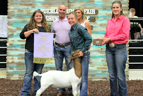 Reserve Grand Champion Market Goat  Buyer: Pueblo Toyota/Pueblo Dodge Chrysler Jeep Ram Price: $3,250.00 Seller: Lannie-Jo Lisac