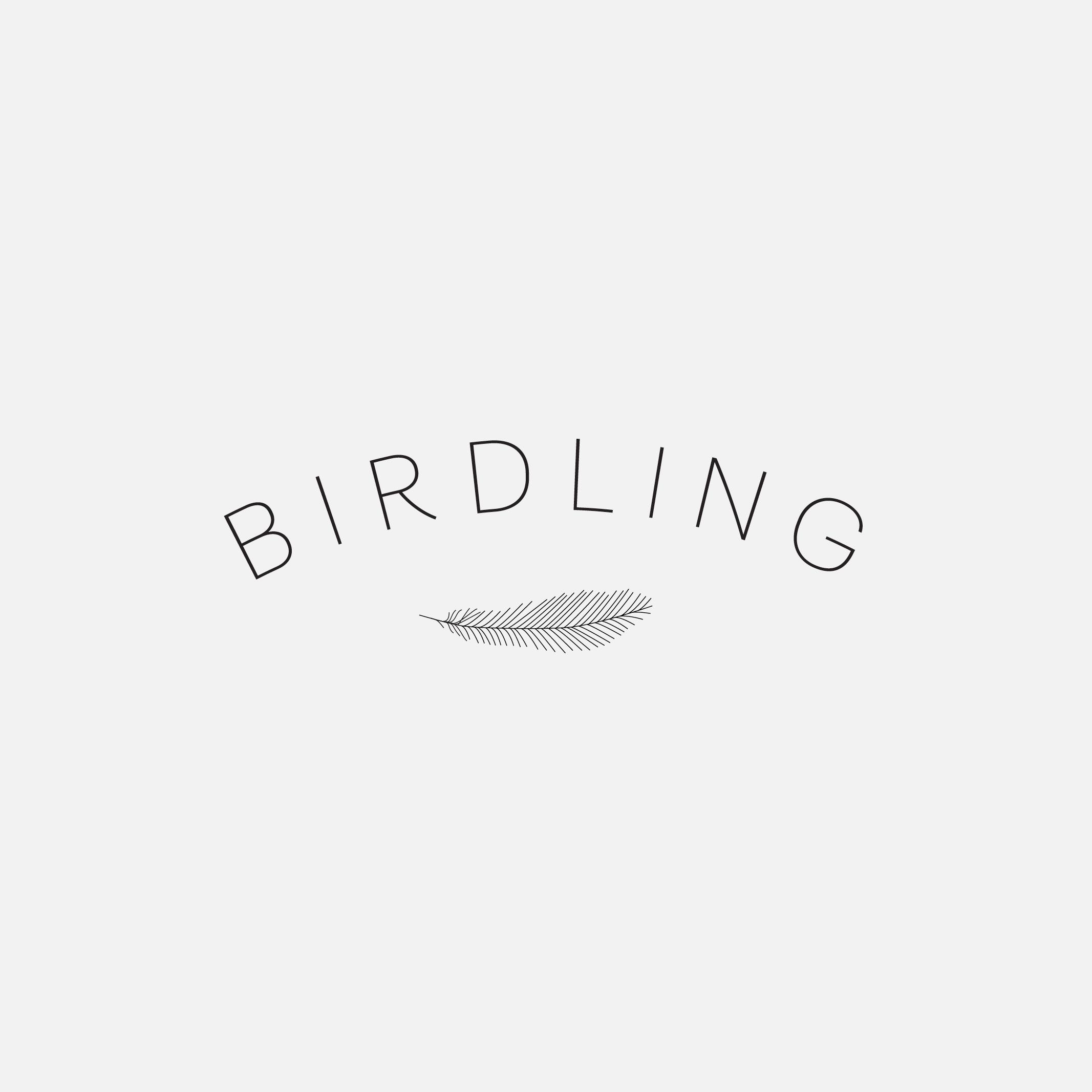 ML_Portfolio_Web_Birdling_2.jpg