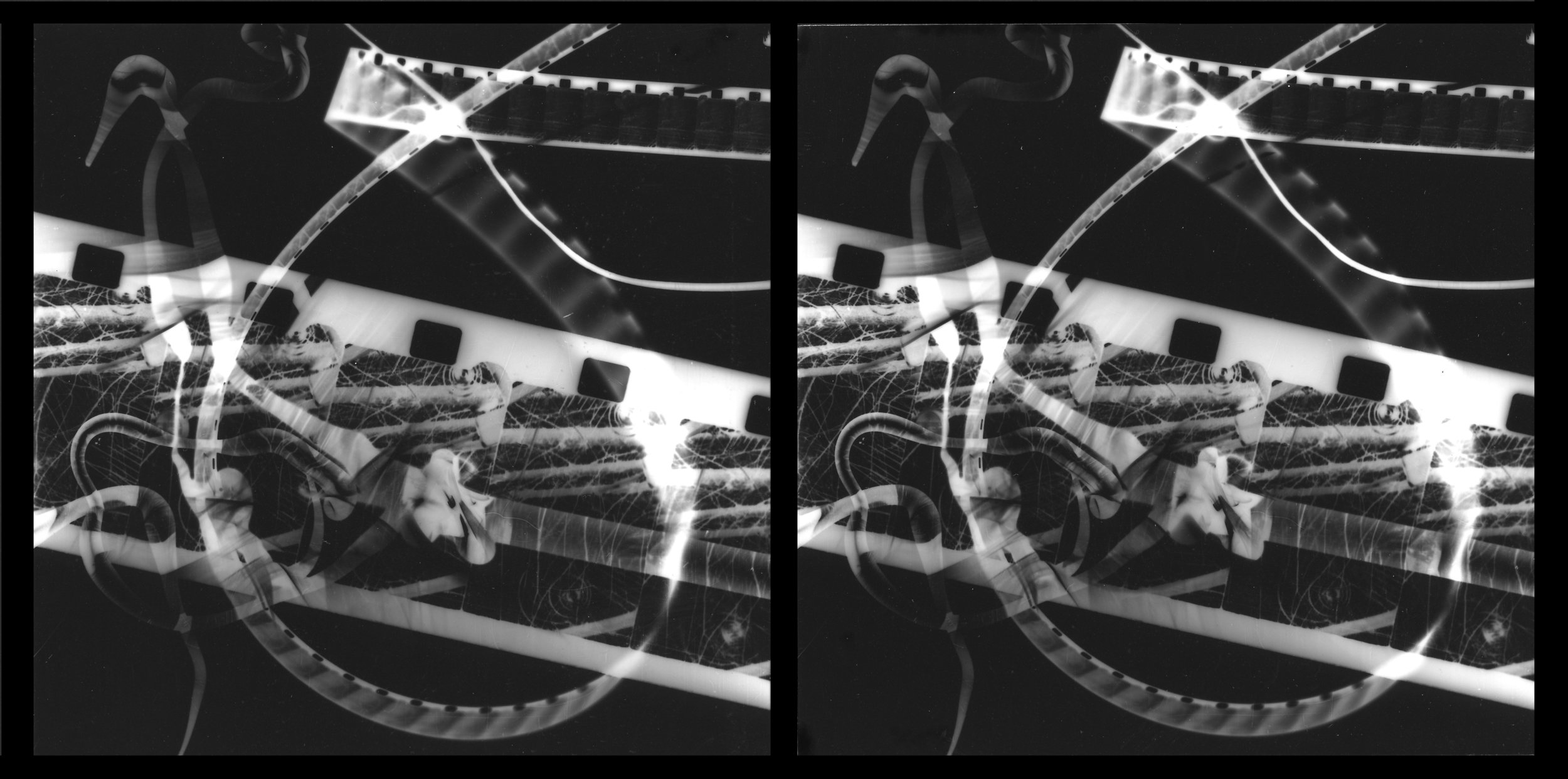 Stereo photogram, 2004