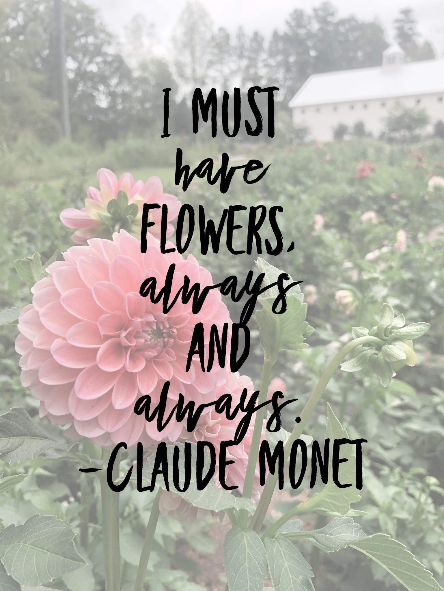 I_must_have_flowers_always_and_always_quote.PNG