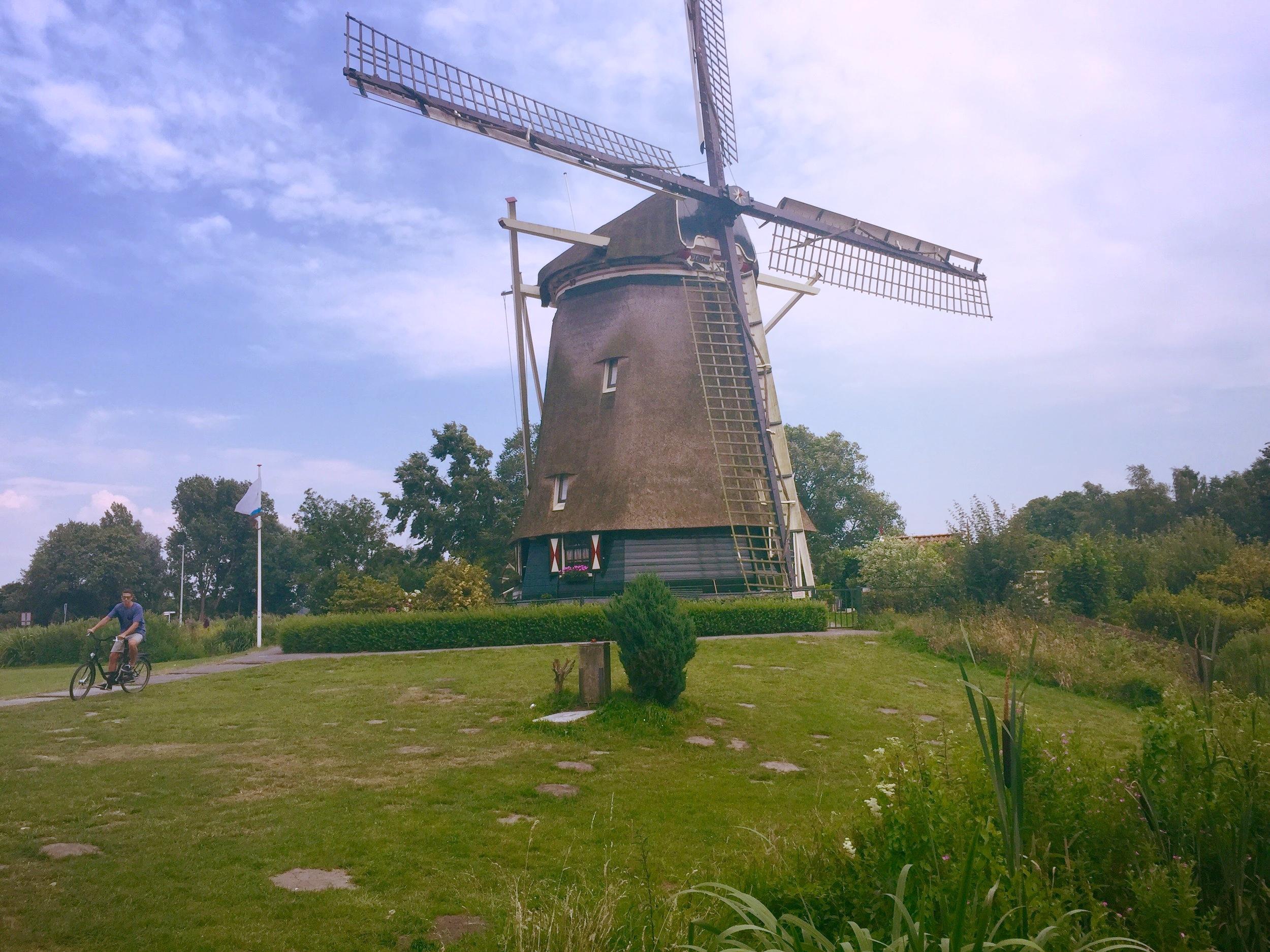 Amstel Park -