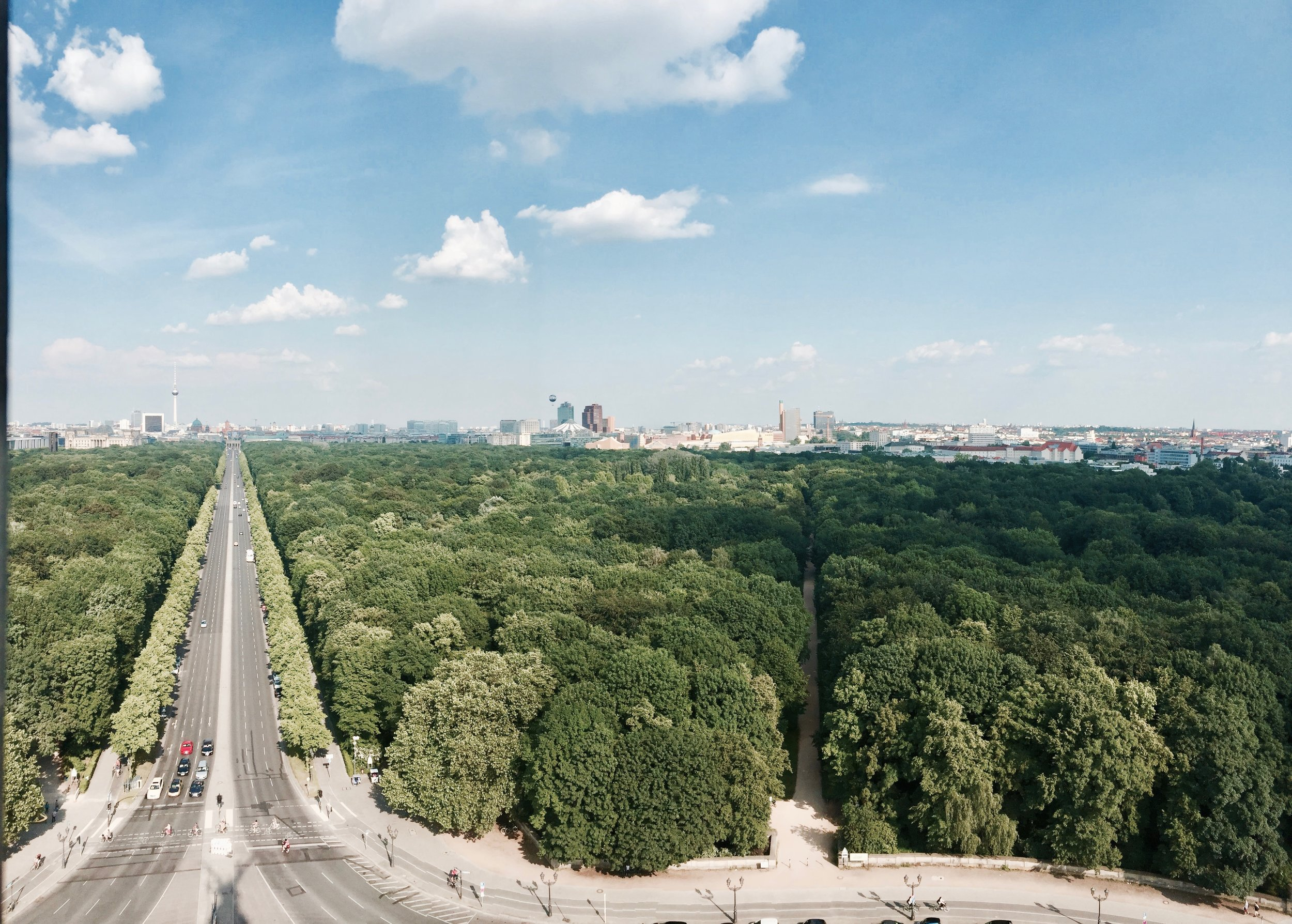 Tiergarten - view from the victory tower