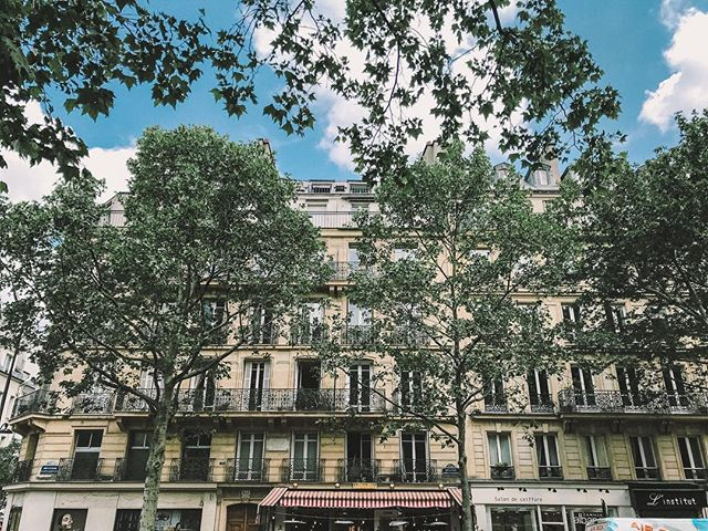 So miss having ☕️🥐 for breakfast every day #paris #street #france #trees
