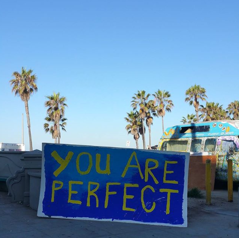You are perfect. Let's celebrate! #venice #losangeles #cali #socal #beach #sunset #palmtrees #sand #perfection