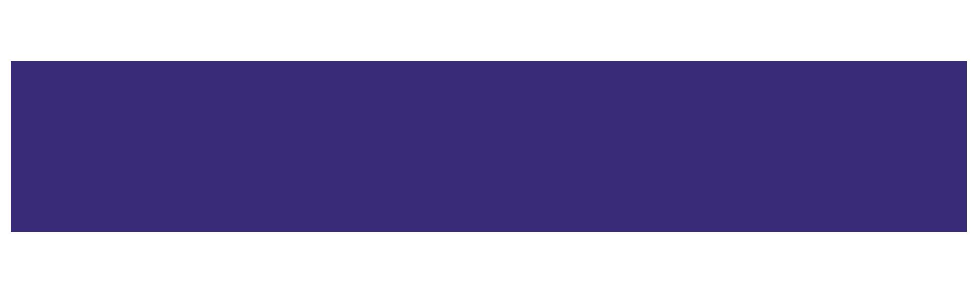 chameleon-logo-text-color (1).png