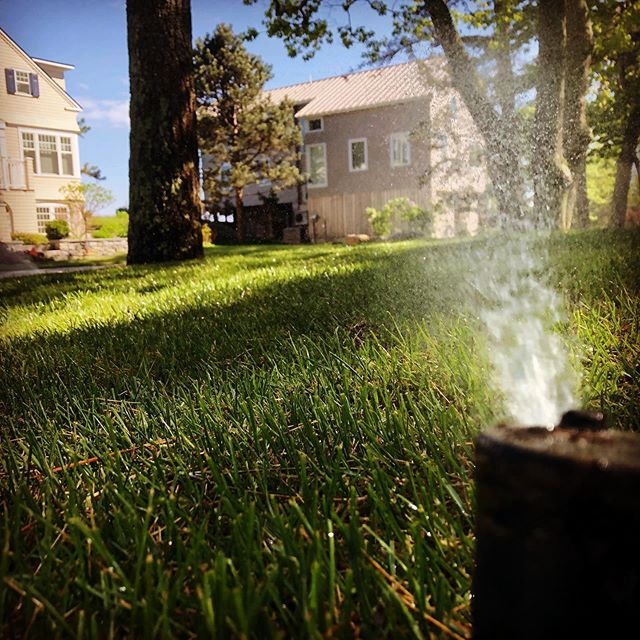 Sunny-day start-up. #irrigation #kennebunkport #spring #summer