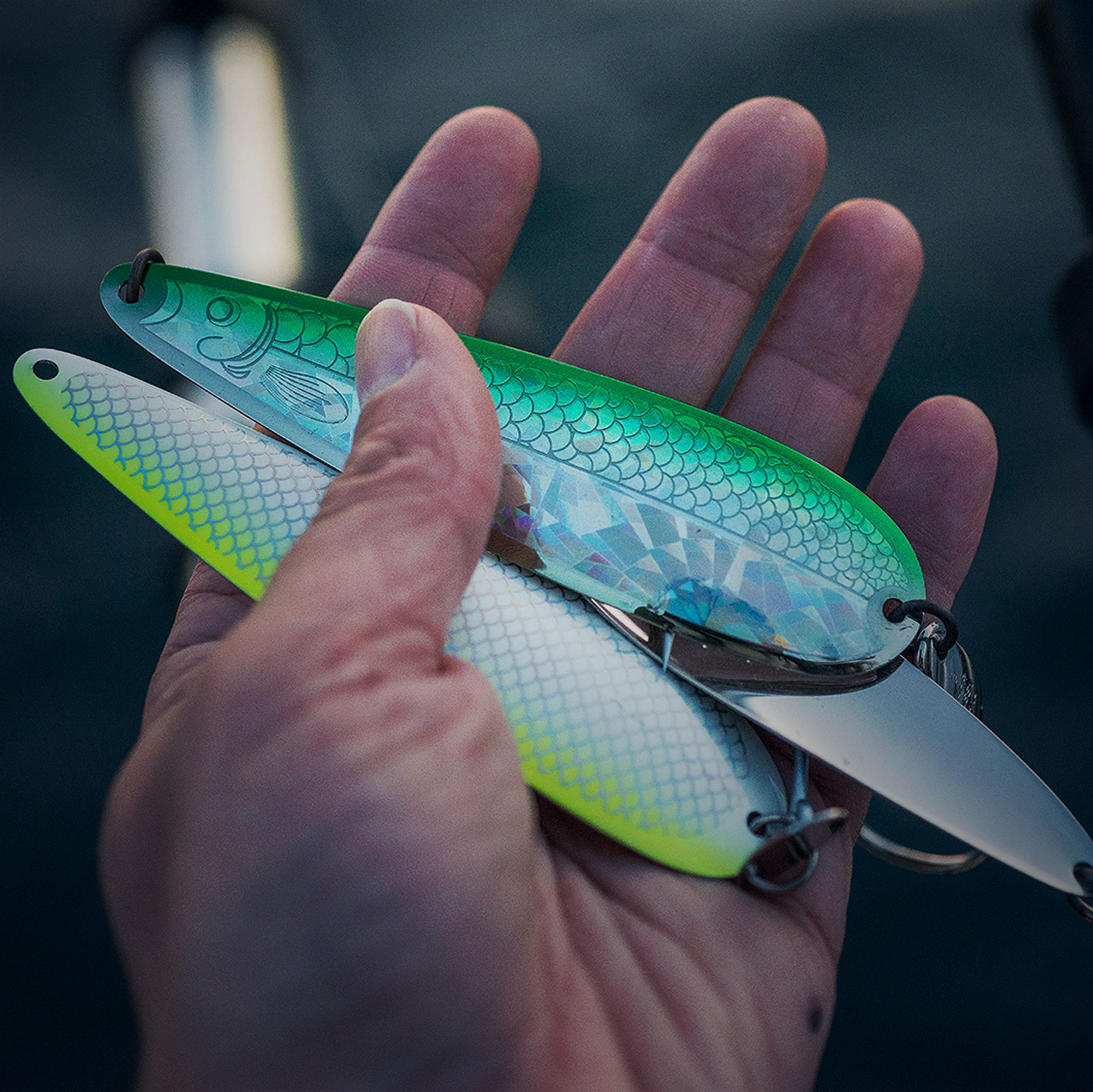 NEW COYOTE SPOON COLOURS