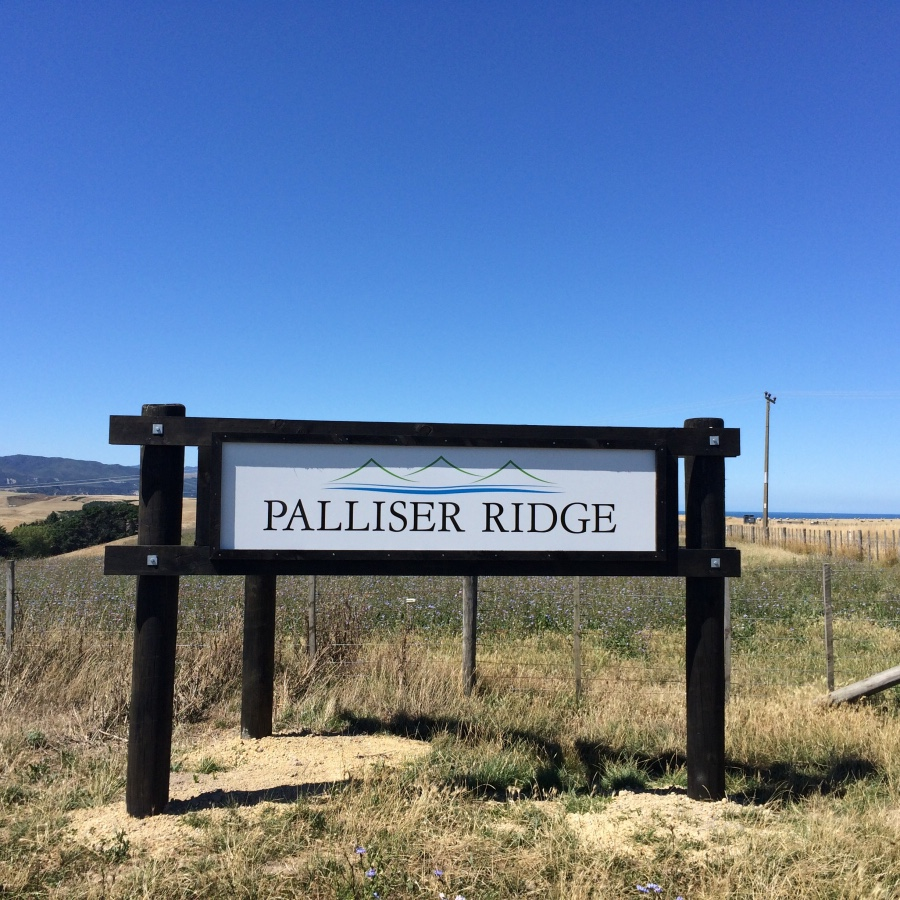 PALLISER RIDGE    Palliser Ridge is proud to bring you free-range and naturally produced prime lamb. Our lambs are grown on the hills overlooking Palliser Bay on the East Coast of New Zealand's North Island, where they feed on grass and herb forages.  Our lambs are born here in Pirinoa, and reared on Palliser Ridge until they are hand-selected to head off to Cabernet Foods Wairarapa for processing. Cabernet are our MPI accredited partner in processing, a family owned local business helping us maintain the credibility and traceabllity of our lamb product.   The lamb carcass is then delivered to Gavin Green and the team at Greytown Butchery,  ready to become one of your favourite cuts. Not only do Gav and the team prepare a large selection of fresh Palliser Ridge Lamb for their cabinets ready for walk in customers, they also supply a number of food establishments who choose to cook with our prime product.