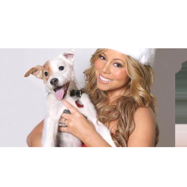 Hairstyle inspirations: Mariah Carey 1