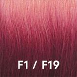 F1F19.jpg