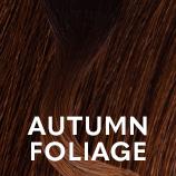 AutumnFoliage.png