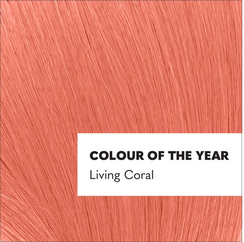 Living coral, pantone's colour of the year for 2019