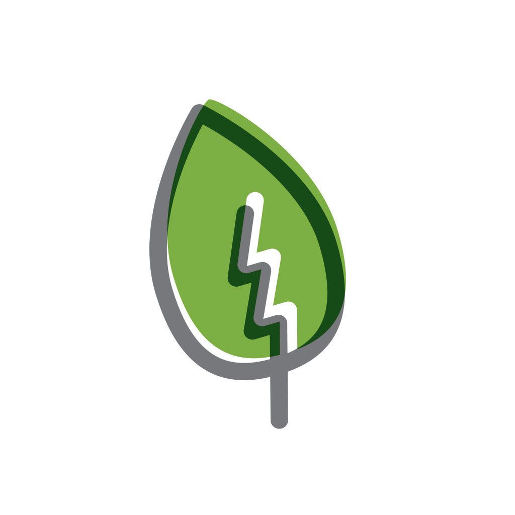 ace-leaf-01.jpg