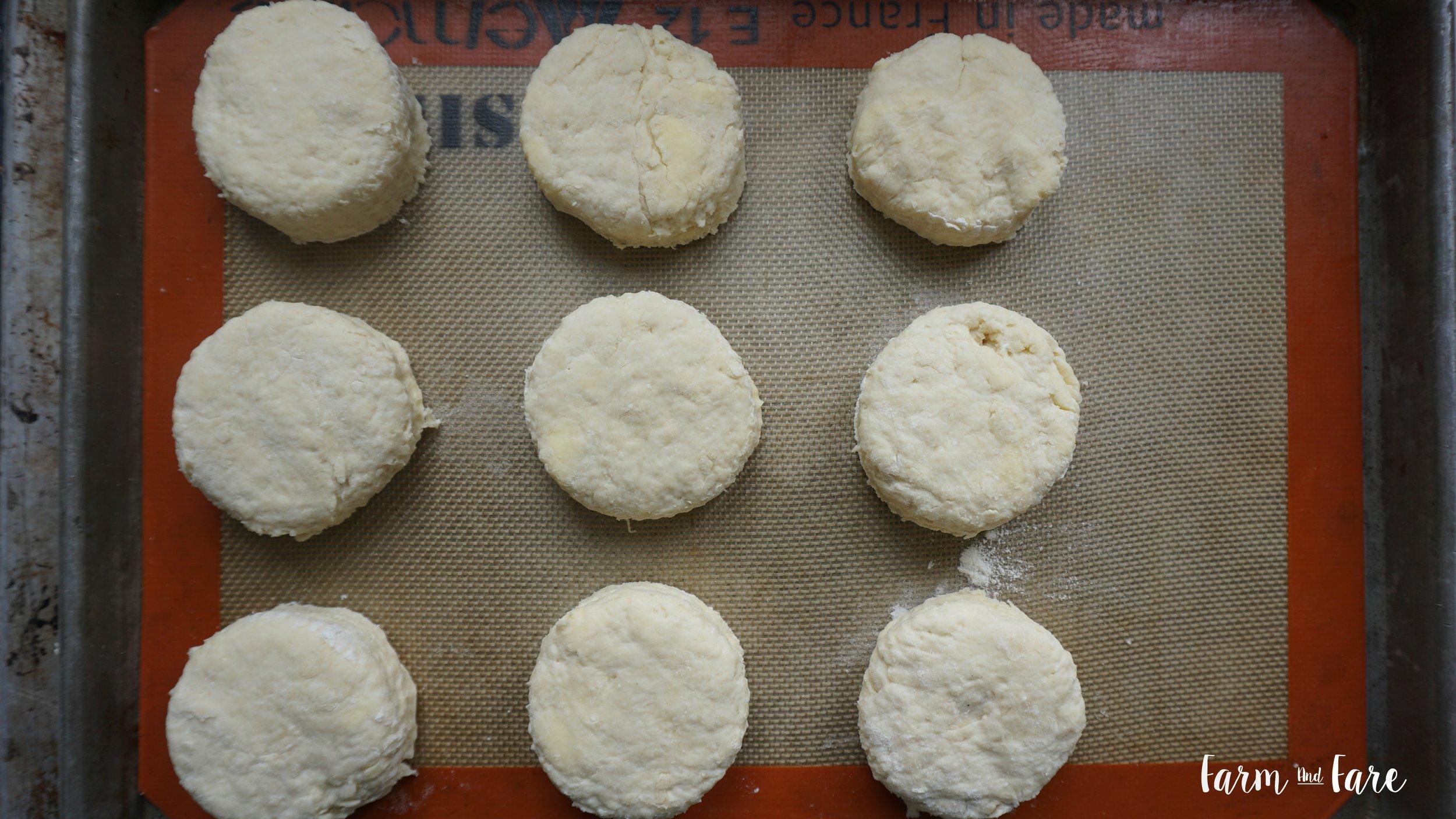 biscuit14.jpg
