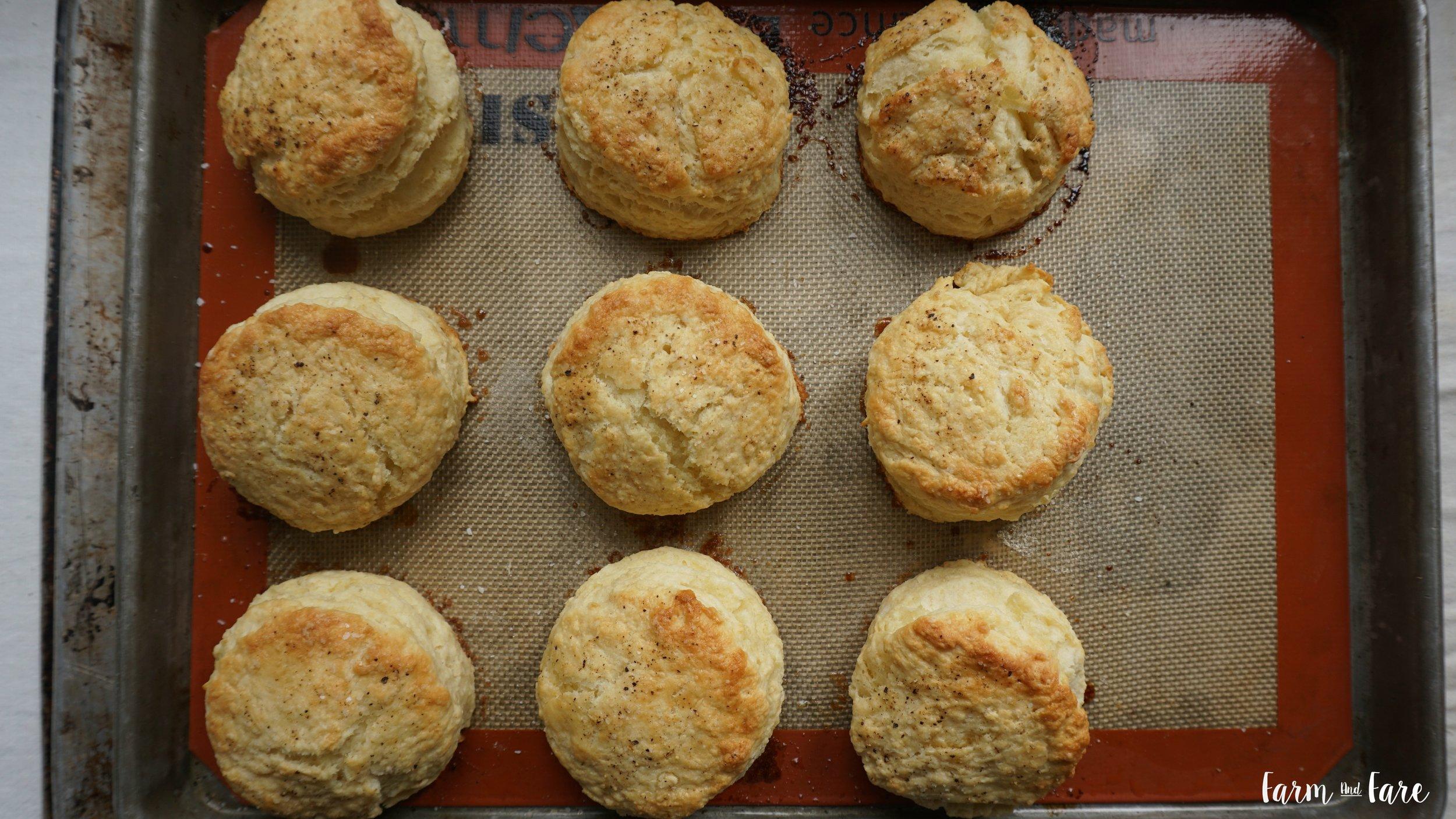 biscuit17.jpg