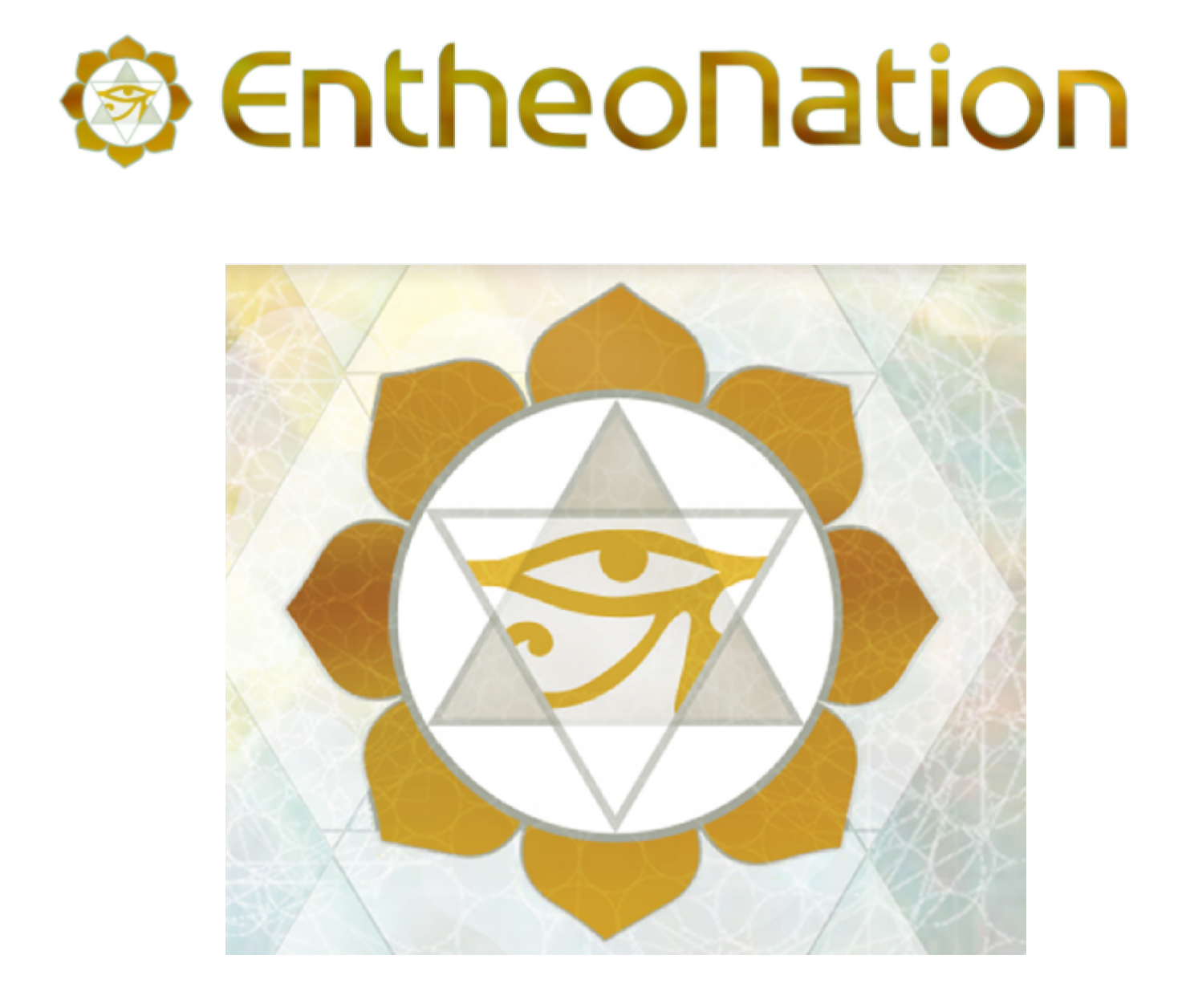 ENTHEONATION - Entheonation.com grew their traffic organically in the period of 3 months through consistent and qualitative content creation.Although results took for 3 months to show, their traffic has steadily increased without any further input.Sessions were increased by 45%, page views by 35% and are projected to grow further.In just 1 year we increased organic traffic by 1,800% & total traffic by 550%. This was done through onsite optimization, offsite optimization, content campaigns and strategic link-building.