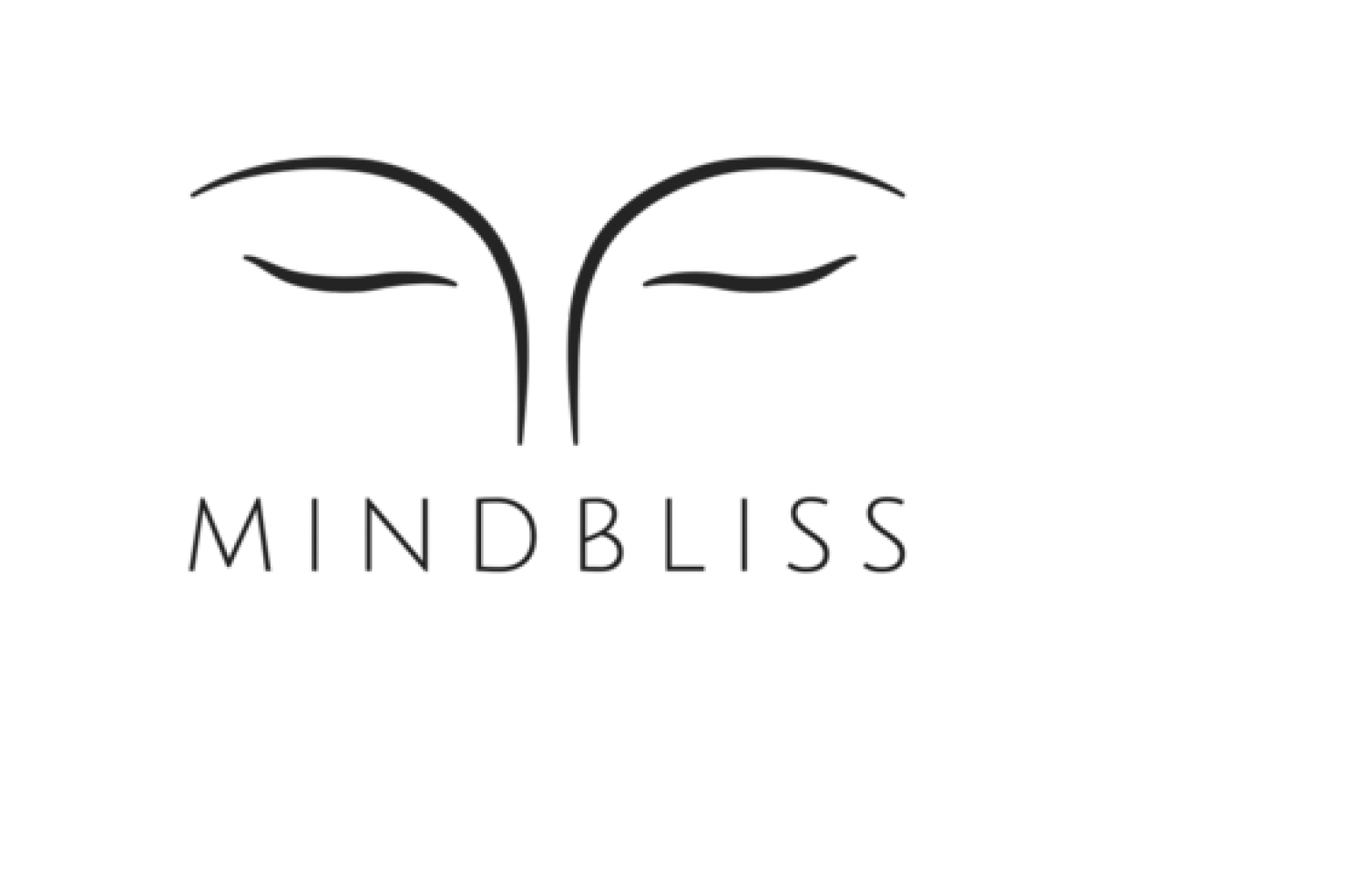 MINDBLISS APP - Through digital PR, outreach and competitive research, Within just 1 month of thecampaign, the client: Mindbliss got on the first page of Google for the keyphrase: