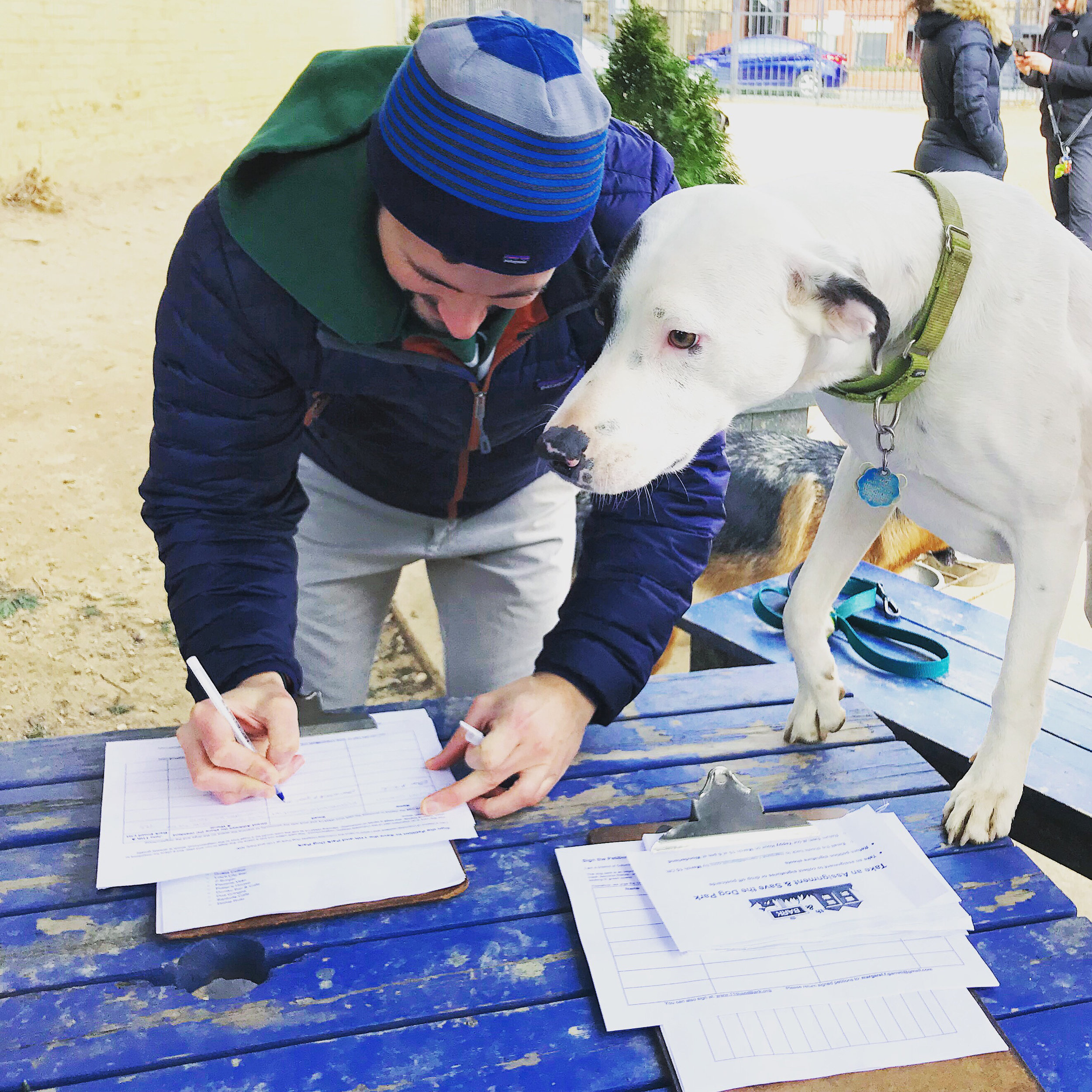 Columbia Heights Dog Park Finn Petition