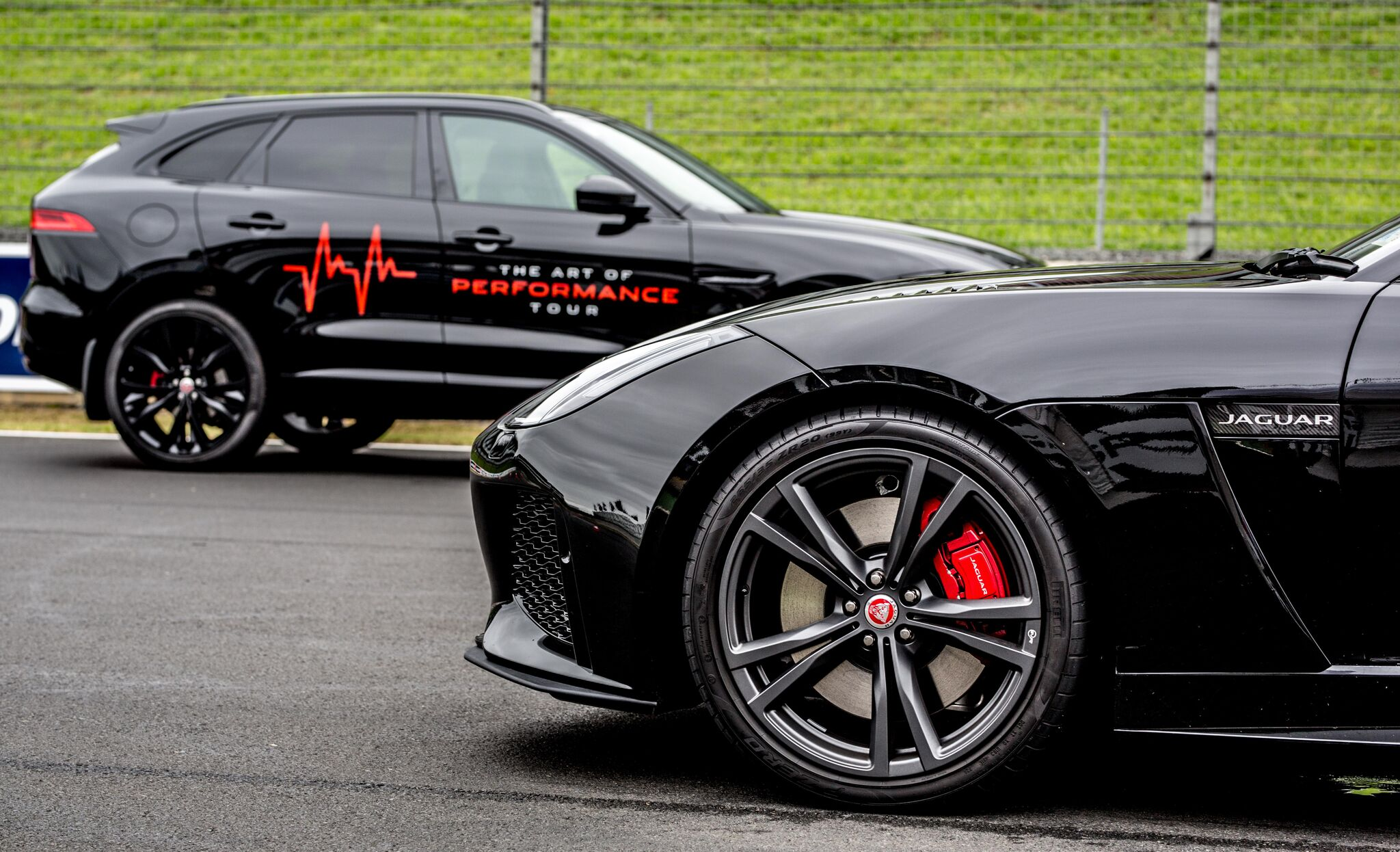 Jaguar - Art of Performance - TUE MORN 2MB-104_preview.jpeg