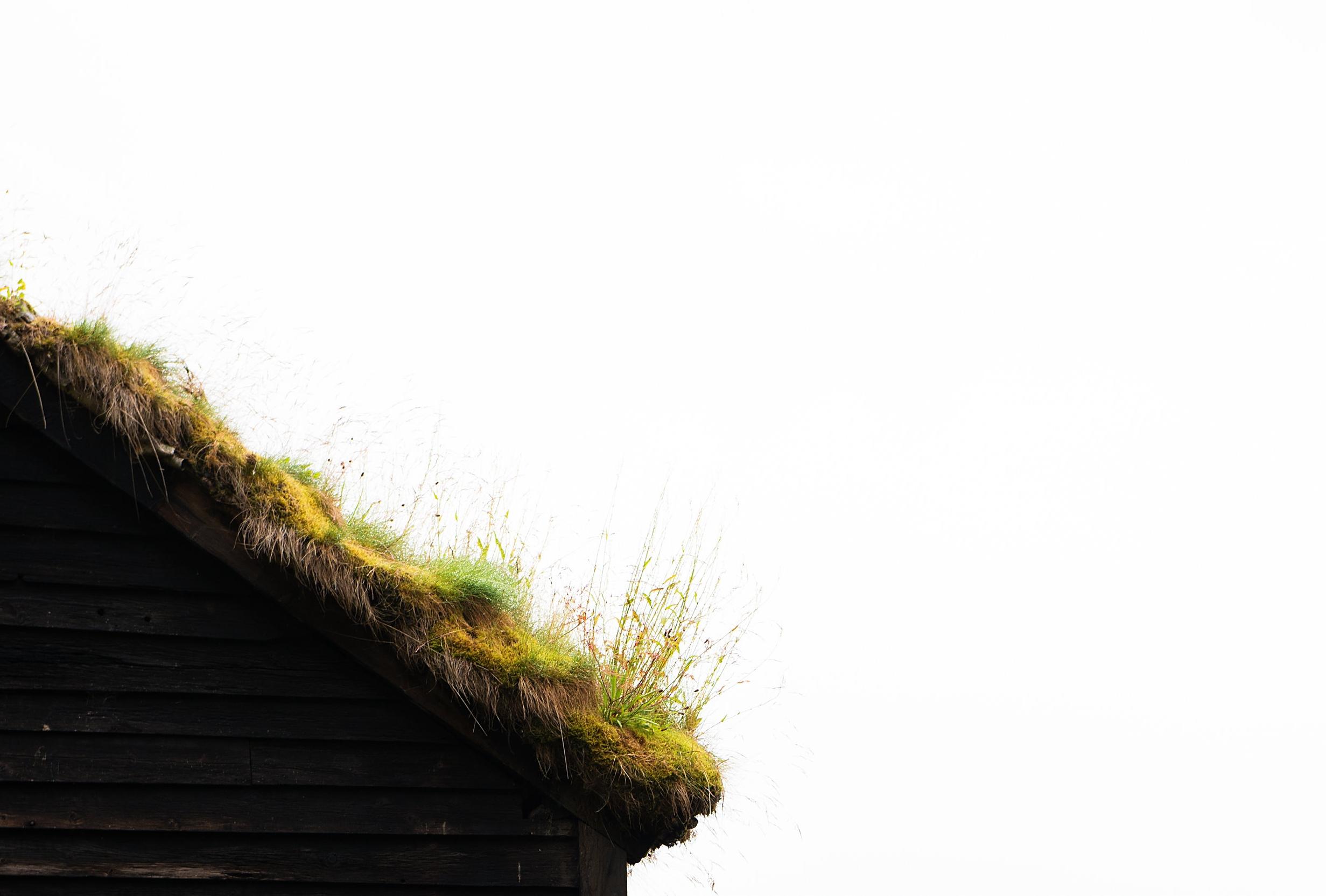 Norwegian roof jana pearl.jpg