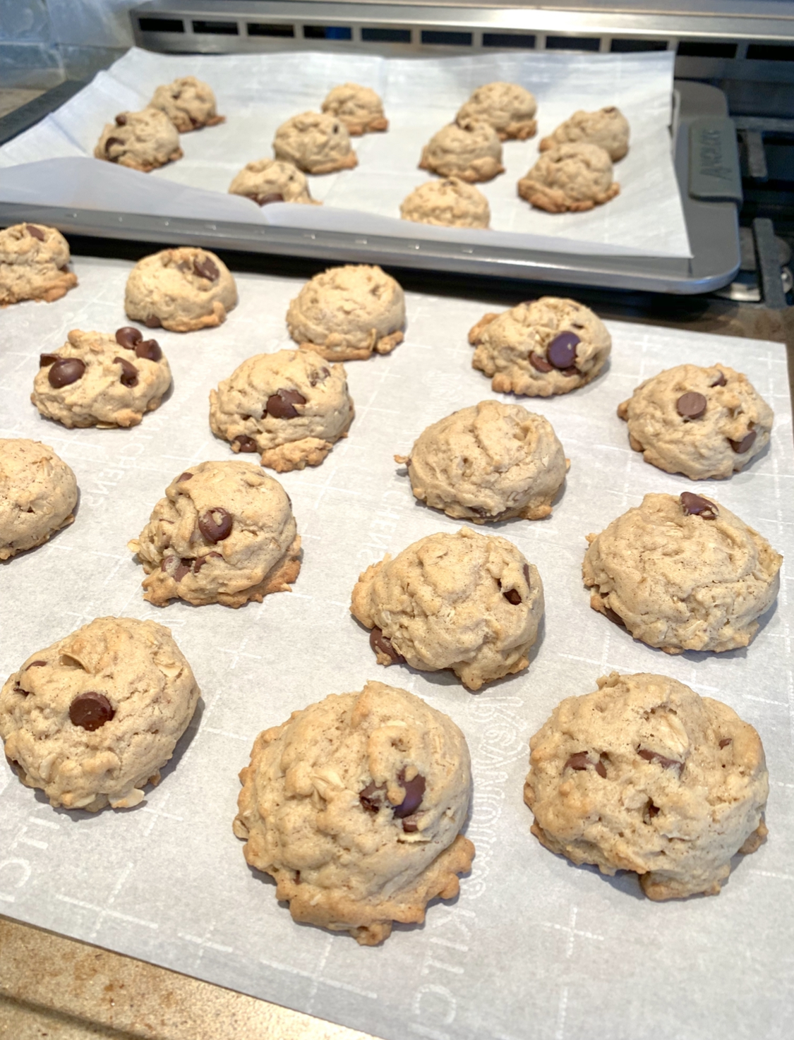 Farmhouse Chocolate Chip Cookies_Farmhouse Redefined.jpg
